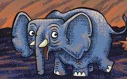Xì hơi trong thế giới động vật: có loài xì hơi, có loài không, có loài lại phải cố xì hơi để mà sống