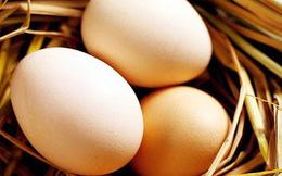 Trứng gà phòng chống tăng huyết áp?