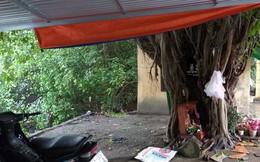 Bàng hoàng phát hiện người phụ nữ tử vong dưới gốc cây bồ đề