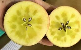 """Tiết lộ về loại táo mật bạc triệu đang được """"săn đón"""", luôn trong tình trạng hết hàng"""