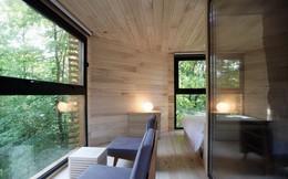 Ngôi nhà trên cây nằm giữa rừng xanh có đầy đủ tiện nghi như khách sạn