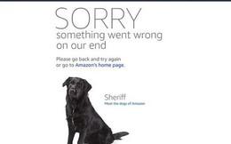 Website của Amazon bị sập do đợt sale quá khủng