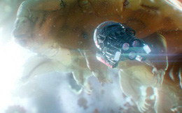 Bạn sẽ bất ngờ khi biết sinh vật suýt nuốt chửng Hank Pym trong Ant-Man & The Wasp là gì