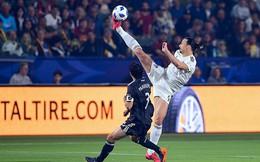 Ibrahimovic: Tôi giống một vị Chúa chứ không phải chú sư tử nữa!