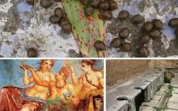 Những sự thật khó tin về cuộc sống của người La Mã cổ: đánh răng bằng nước tiểu, ăn no quá nôn luôn tại bàn