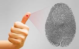 Mỗi người có kiểu vân tay khác nhau và nếu sở hữu vân tay kiểu này thì bạn sinh ra đã là người có biệt tài hiếm thấy