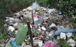Xét nghiệm đáng lo về thuốc trừ sâu quanh Hà Nội: 67 người thử, chỉ 35 người ở mức an toàn