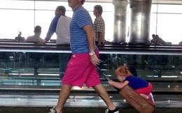 Giây phút đợi chờ mòn mỏi ở sân bay sẽ thú vị hơn khi bạn bắt gặp 13 hình ảnh vừa kì lạ vừa buồn cười này