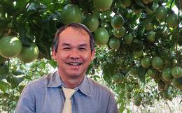 Cao su, cọ, cây ăn trái của bầu Đức sau vỡ đập thủy điện tại Lào hiện ra sao?