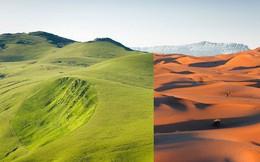 Những sự thật ít người biết về sa mạc Sahara - nóng bỏng, điên rồ nhưng kỳ diệu bậc nhất hành tinh