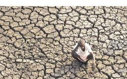 Ẩu đả, giết nhau ở Ấn Độ vì thiếu nước