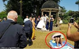 """Bức ảnh vị khách """"không mời mà đến"""", ngang nhiên nằm tắm nắng giữa cô dâu chú rể và quan khách gây tranh cãi"""
