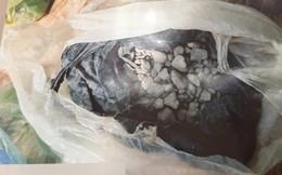 [ẢNH] 10kg thuốc nổ trong nhà của kẻ ném bom vào trụ sở công an phường