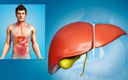 TS Mỹ tiết lộ công thức quét sạch độc tố ở gan chỉ trong 24 giờ rất phù hợp với người Việt