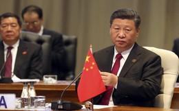 """Đi ngược di huấn của Đặng Tiểu Bình, TQ tuyên bố """"không thể là con voi ẩn mình chờ thời"""""""
