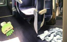 Chuyến tàu ác mộng: Chú chó vô tư lên tàu giải quyết nỗi buồn, hành khách cắn răng ngồi chịu đựng mùi hôi hám suốt 4 tiếng đồng hồ