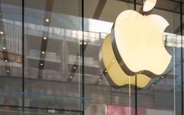 Tại sao giá cổ phiếu của Apple lại bị đánh giá thấp nhất thế giới?
