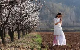 Yêu thích cuộc sống tĩnh lặng trên núi, cô gái 23 tuổi tự tay dựng ngôi nhà nhỏ, trồng rau, sống an nhàn những ngày thanh xuân