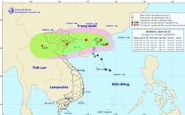 Tin bão số 4 mới nhất ngày hôm nay 14/8: Gió giật cấp 10, Bắc Bộ mưa rất to