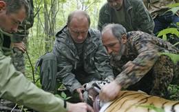 """Kênh truyền hình Pháp hứng """"gạch đá"""" vì xuyên tạc về bức ảnh ông Putin chụp cùng hổ"""
