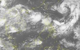 """Chuyên gia nhận định bão số 4 """"hình thái vô cùng đặc biệt, hướng đi dị thường"""""""