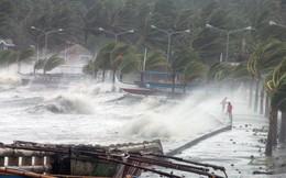 Thái Bình cấm biển, Hải Phòng huy động 4 xe thiết giáp ứng phó bão số 4