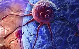Khám phá ra phân tử tiêu diệt tế bào ung thư não tích cực nhất