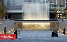 8 cửa hàng đẹp sang chảnh bậc nhất của Apple, đảm bảo vào bạn sẽ không muốn ra Công nghệ 9 giờ trước