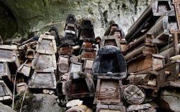 Chính phủ cấm chôn cất, quan tài ở Trung Quốc được tái sử dụng để làm đồ nội thất