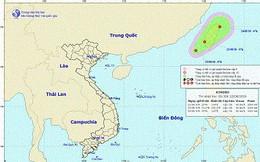 Xuất hiện áp thấp nhiệt đới ở Đông Bắc Biển Đông