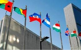 """Liên Hợp quốc tổ chức cuộc họp về những tên """"rô-bốt giết người"""""""
