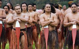 Người New Zealand có một phong tục cực hay và ý nghĩa để bảo vệ thiên nhiên