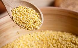"""4 thực phẩm """"vàng"""" giúp sửa chữa, trẻ hóa dạ dày: Hãy ăn bổ sung trước khi phải uống thuốc"""