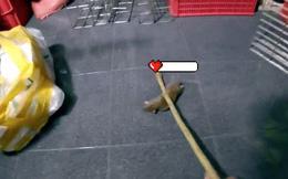Thanh niên truy sát cả họ nhà chuột rồi kỳ công dựng clip theo phong cách game đối kháng đăng MXH