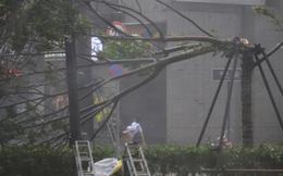 Trung Quốc tiếp tục cảnh báo đỏ với siêu bão Mangkhut