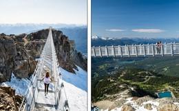 Khám phá cầu treo vượt thung lũng cao nhất Bắc Mỹ: 'Thuốc thử' cho lòng can đảm!