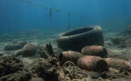 24h qua ảnh: Rác thải tràn ngập đáy đại dương