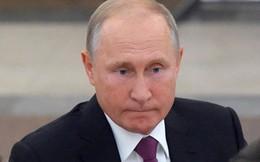 """Phản ứng của Tổng thống Putin trong vụ IL-20 bị chỉ trích là """"quá mềm yếu"""""""