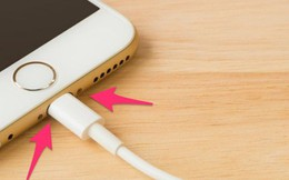 Nổi tiếng với những sản phẩm chất lượng cao nhưng đây là lý do cáp sạc iPhone dễ đứt hơn cả hàng 'fake'