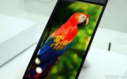 Hiểu đúng về độ chuẩn màu trên màn hình điện thoại (phần I)