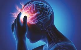 Làm cách nào để phòng ngừa tai biến mạch máu não?