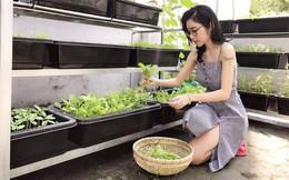 Cận cảnh khu vườn trên sân thượng toàn cây cối xanh ngát của Elly Trần