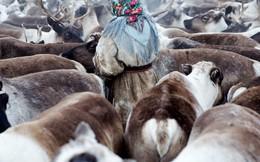 [PHOTO STORY] Những người phụ nữ bị bỏ quên ở Siberia
