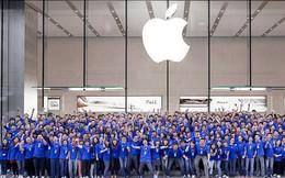 Bằng đại học ở Apple và Google là không cần thiết, thậm chí họ thích kinh nghiệm hơn cả bằng cấp