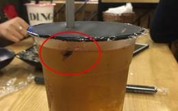 Đang nhâm nhi cốc trà sữa vừa mua, cô nàng giật mình phát hiện hai loại topping lạ: Ruồi và gỉ sắt