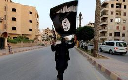 Quái vật khủng bố IS chưa chết, đang cùng al-Qaeda tấn công phương Tây
