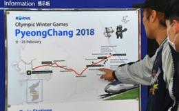 Hàn Quốc chuẩn bị dùng du thuyền đón đoàn Triều Tiên tham gia Thế vận hội mùa đông