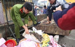 Đang điều tra một số cá nhân thuộc Binh chủng Công binh liên quan đến vụ nổ ở Bắc Ninh