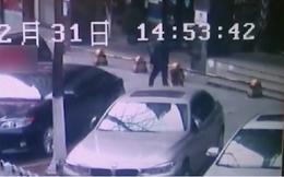 Cảnh sát Trung Quốc hứng chỉ trích dữ dội khi đánh chó đến chết trên vỉa hè