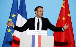 Tổng thống Pháp lấy lòng Chủ tịch Trung Quốc bằng món quà đặc biệt